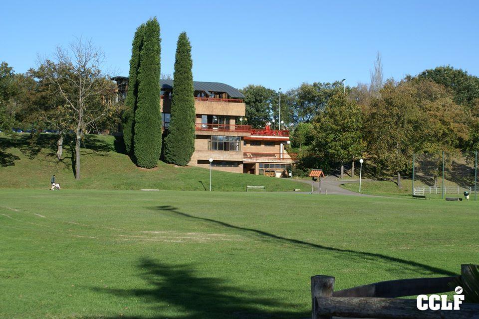 Información sobre las obras de mejora en el Club